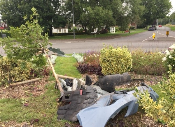 Volunteers' landmark tree destroyed in crash