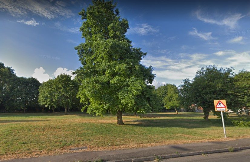 Council will build £20,000 fortifications to keep travellers off village green