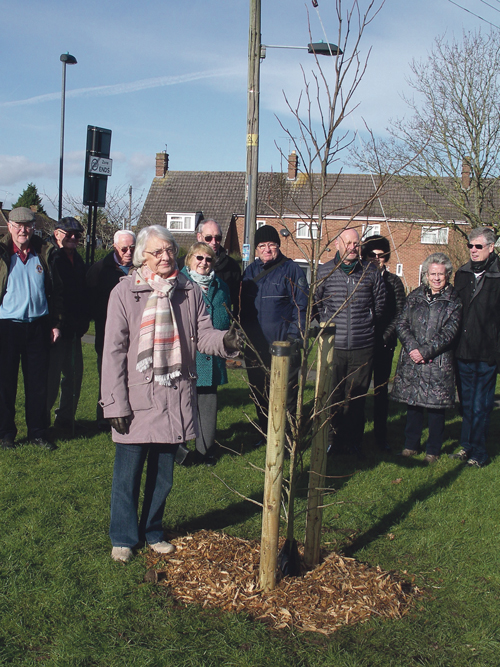 Tree planted in memory of Lions Club founder member