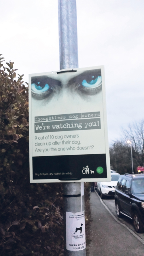 Extra rules over dog fouling welcomed