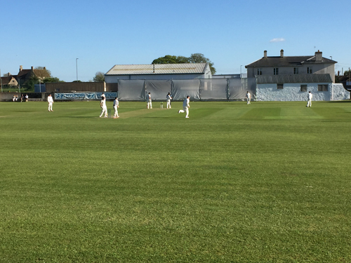 As friendlies begin, cricket club hopes for successful season